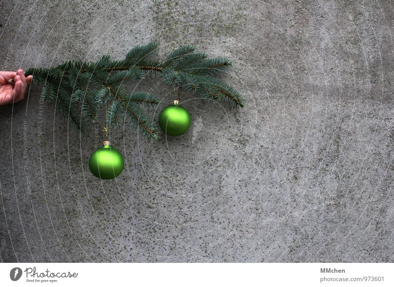 o\ o Decoration Feasts & Celebrations Christmas & Advent Hand Branch Twig Wall (barrier) Wall (building) Concrete To hold on Gray Green Anticipation Love Calm