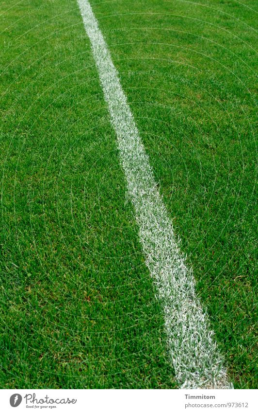 Sure! Sports Sporting Complex Football pitch Grass surface Line Esthetic Simple Natural Green White Emotions Considerable Structures and shapes Blade of grass