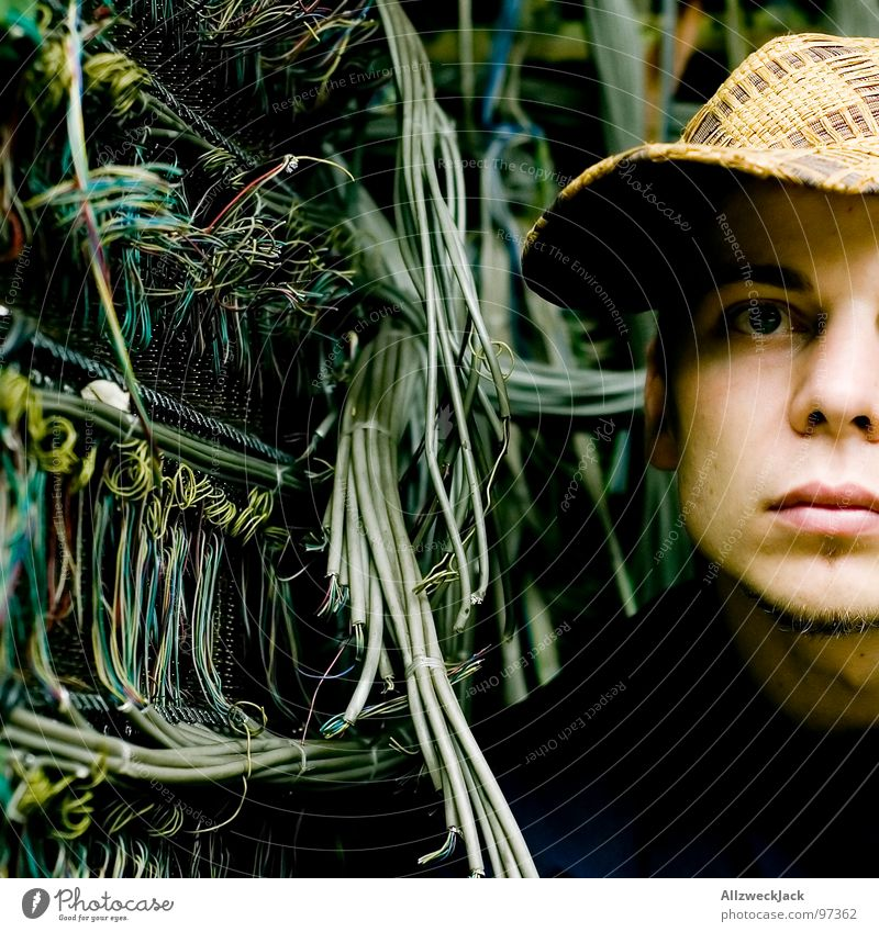 Man Internet Energy industry Electricity Network Cable String Derelict Cap Craft (trade) Muddled Interlaced Knot Computer network Untidy