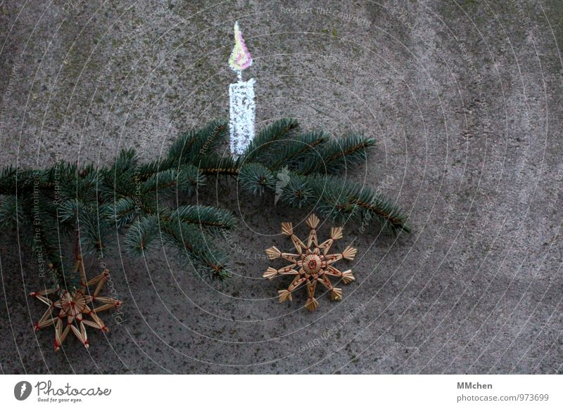 Christmas & Advent Plant Green Calm Gray Feasts & Celebrations Illuminate Decoration Branch Concrete Hope Candle Belief Twig Serene Fir tree