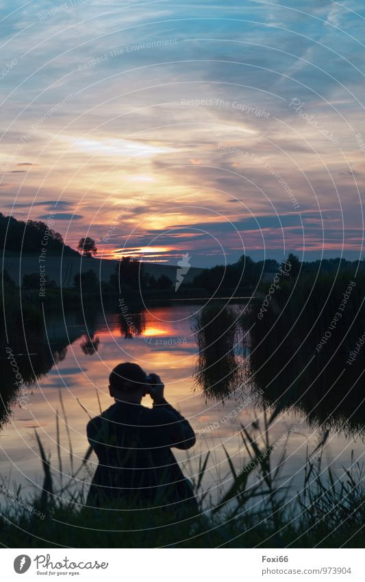In the evening at the pond Masculine Man Adults 1 Human being 45 - 60 years Landscape Plant Animal Water Sky Clouds Storm clouds Horizon Sunrise Sunset Summer