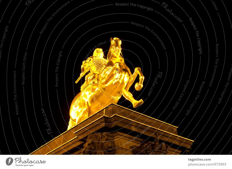 Golden Rider Dresden Saxony Germany golden riders Horse Monument Night Evening Dark Vacation & Travel Travel photography Idyll Freedom Card Tourism Illuminate