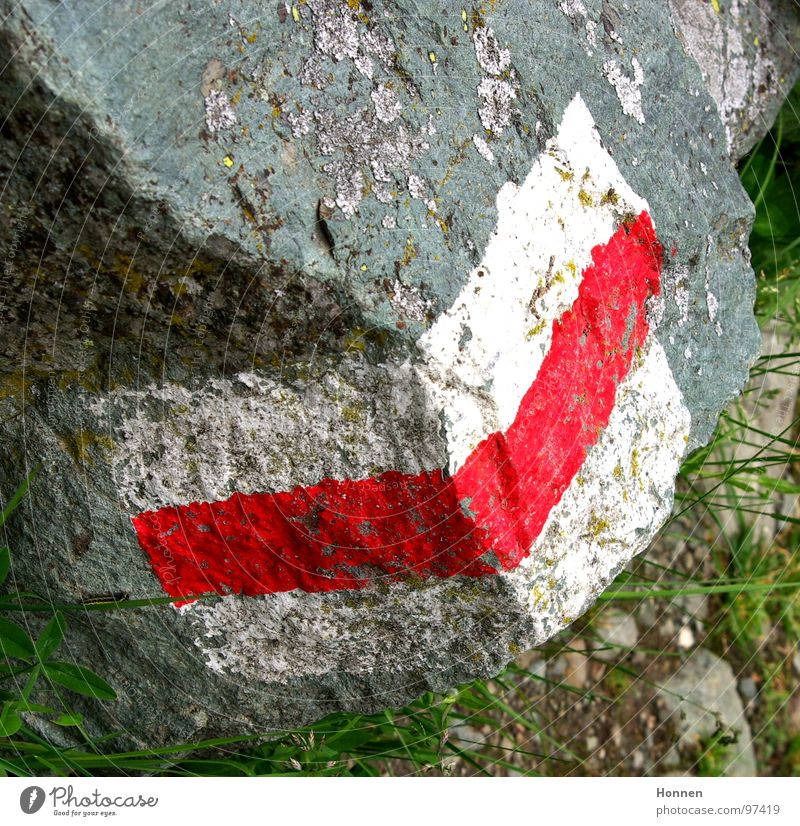 White Red Flower Meadow Mountain Grass Stone Rock Signs and labeling Hiking Signage Alps River Hill Footpath Switzerland