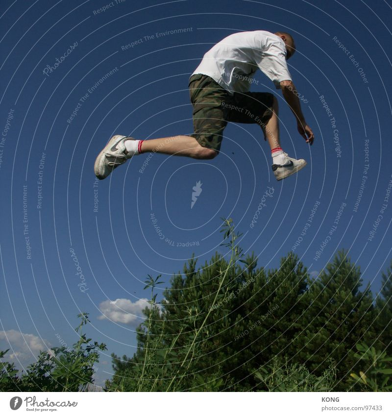 invisible obstacles Jump Sky Sky blue Plant Botany Forest Coniferous trees Sneakers Bird Departure Joy Track and Field Man jump high jump up Flying Aviation