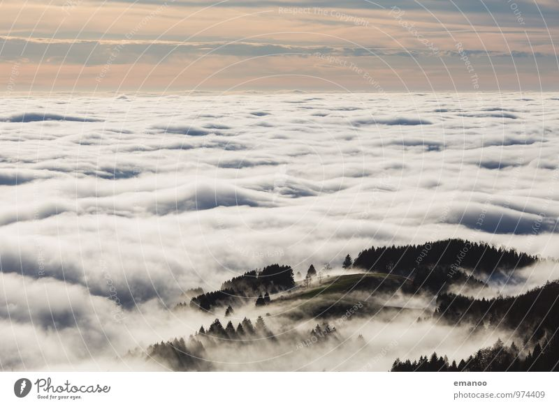 In the sea of fog Vacation & Travel Tourism Trip Far-off places Freedom Mountain Hiking Environment Nature Landscape Air Sky Clouds Horizon Sunlight Autumn