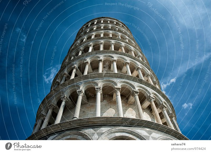 Leaning Tower of Pisa. Vacation & Travel City Far-off places Wall (building) Street Architecture Building Wall (barrier) Garden Art Facade Park Stairs Door