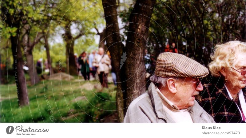 Grandpa & Grandma Forest Senior citizen Grandfather Tree Gray To talk Green Grave Cemetery Calm Together Loneliness Cap Procession Portrait photograph Grass