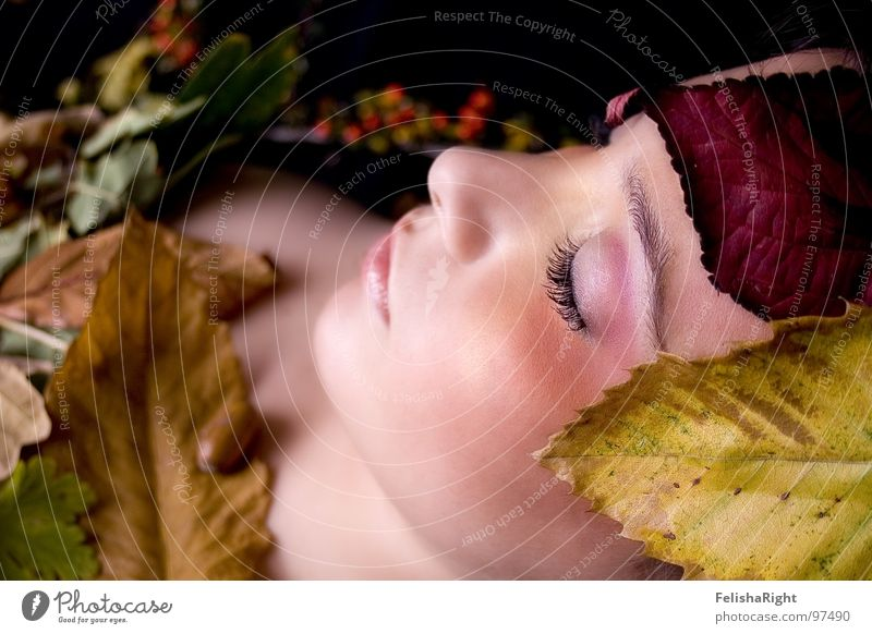 Woman Calm Leaf Autumn Beauty Photography Model Romance Make-up Smooth Cosmetics