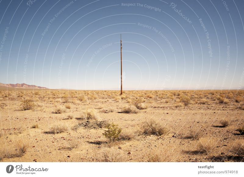 the lonesome crowded west Environment Nature Landscape Plant Sand Desert Death valley Nationalpark Hot Bright Warmth Electricity pylon Sparse