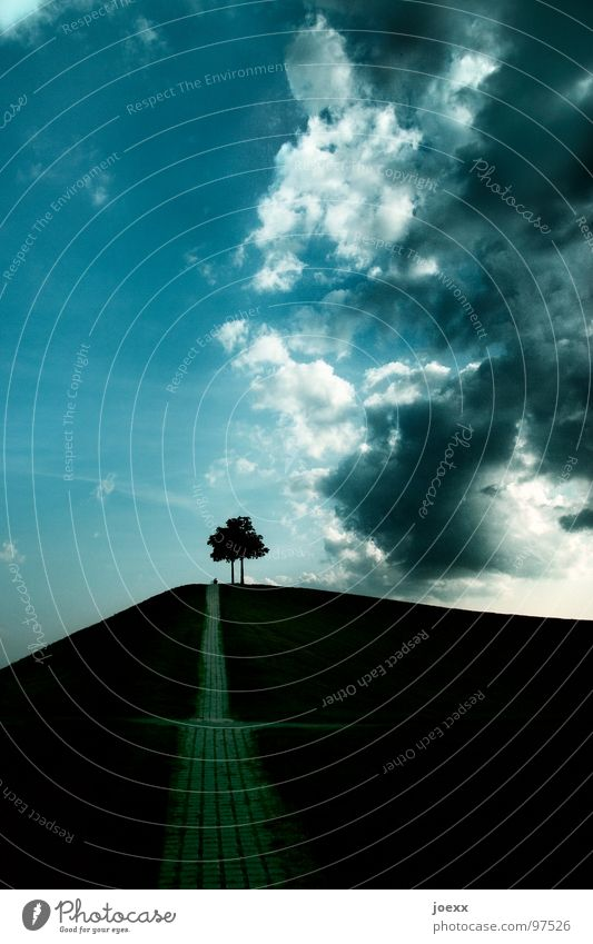 Sky Blue Tree Clouds Mountain Meadow Grass Lanes & trails Happy Garden Couple Park In pairs Future Threat Hill