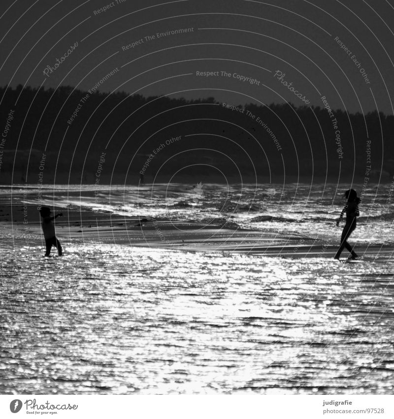 On the beach Lake Beach Ocean 2 Playing Light Back-light Evening sun Coast Black Black & white photo Baltic Sea Human being Dance Swimming & Bathing Walking