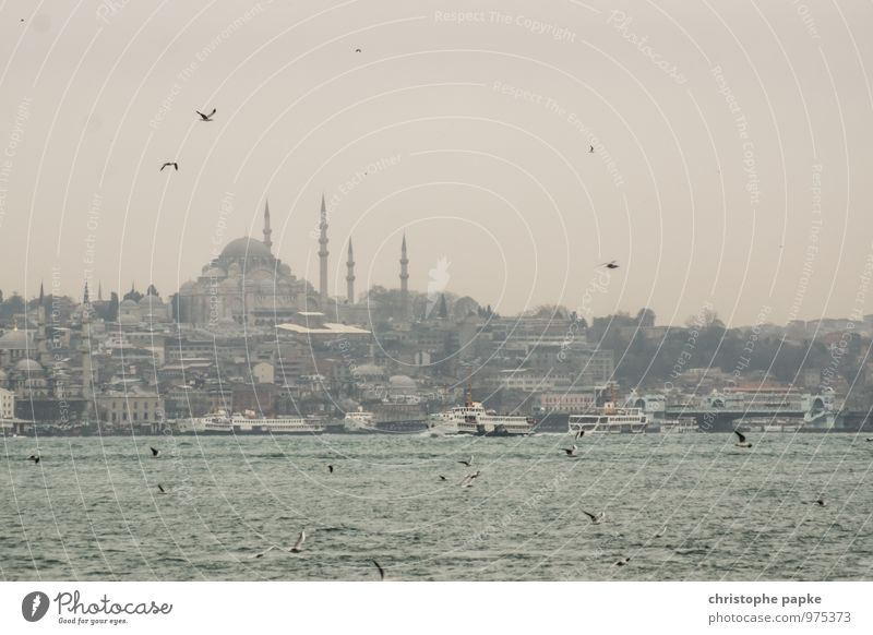 travel memories Vacation & Travel Sightseeing City trip Bad weather Istanbul Turkey Town Port City Downtown Skyline Church Tourist Attraction Landmark