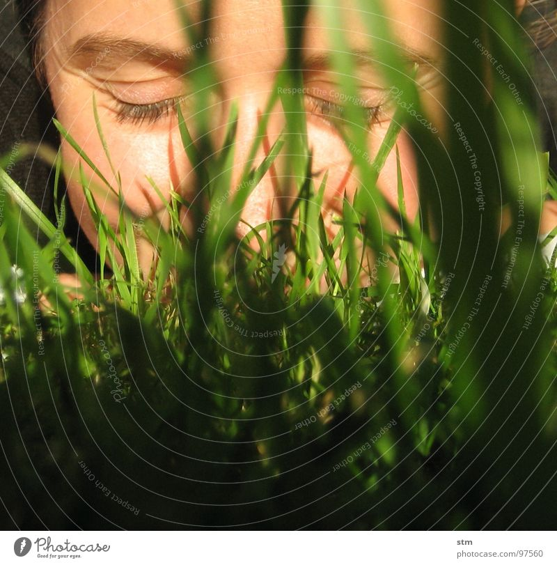 bite the dust Woman Grass Meadow Blade of grass Leaf Portrait photograph Self portrait Serene Ease Happiness Playing Joy Face Lawn smile Eyes Nose Wrinkles