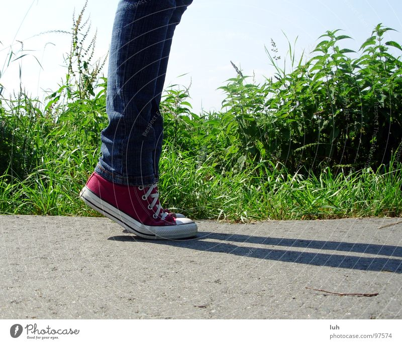 Youth (Young adults) Green Red Street Meadow Gray Footwear Large Tall Lawn Asphalt Traffic infrastructure Blade of grass Chucks Punk Hardcore