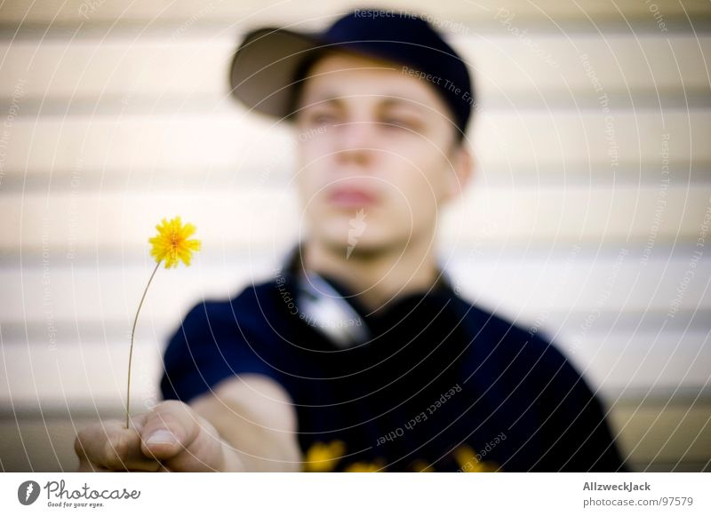 Man Plant Flower Love Yellow Blossom Sweet Communicate Friendliness Blossoming Cap Harvest Foliage plant Valentine's Day Affection Like