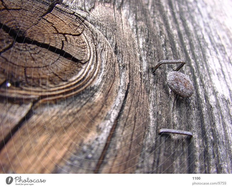 wood Wood Nail Brittle Photographic technology Macro (Extreme close-up) Wood grain Old rice purposes Derelict