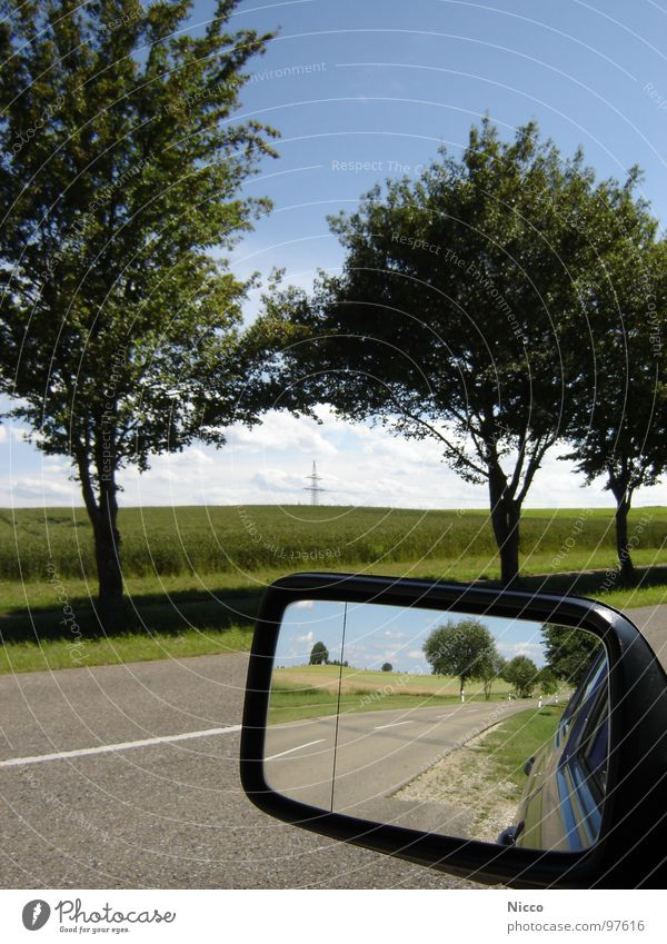 retrospect Tree Green Leaf Apple tree Cherry Bad weather Far-off places Horizon Clouds White Beautiful Variable Hot Asphalt Tar Pavement Mirror Rear view mirror