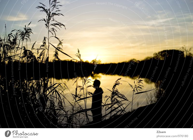 Sky Nature Youth (Young adults) Summer Relaxation Landscape Calm Young man 18 - 30 years Adults Style Happy Lake Lifestyle Masculine Dream