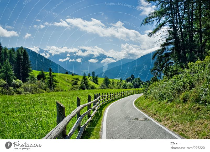 departure Environment Nature Landscape Sky Clouds Summer Beautiful weather Tree Bushes Meadow Alps Mountain Traffic infrastructure Street Sustainability Natural