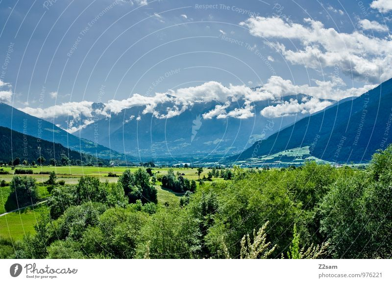 Vinachgau Environment Nature Landscape Sky Clouds Summer Beautiful weather Tree Bushes Meadow Alps Mountain Far-off places Sustainability Natural Blue Green
