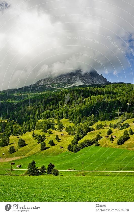Nature Green Summer Tree Landscape Calm Clouds Dark Forest Environment Mountain Natural Rock Idyll Bushes Climate