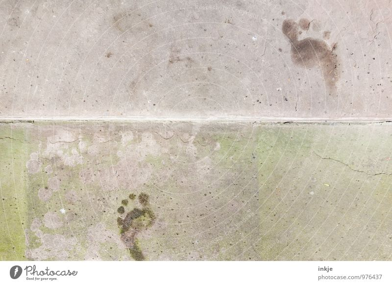 last traces of summer Lifestyle Feet Deserted Stairs Pedestrian Lanes & trails Concrete Footprint Line Going Walking Barefoot Tracking Colour photo