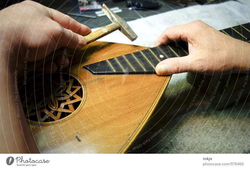 sounds Work and employment Profession Craftsperson Instrument making Workshop Craft (trade) Hammer Adults Life Hand 1 Human being Lute Mandolin Old Creativity