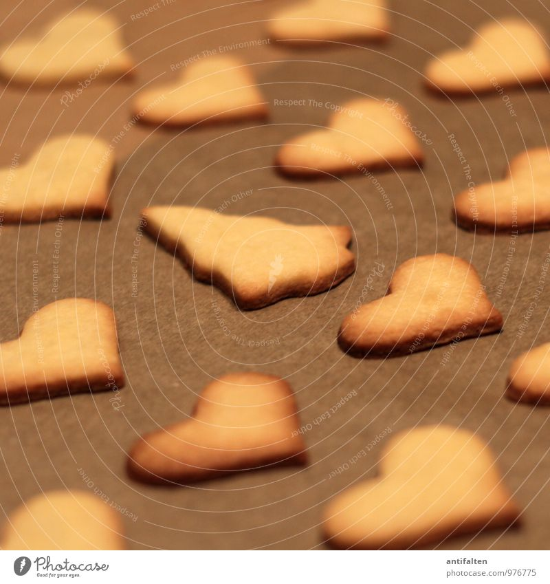 CECKS! Dough Baked goods Cookie Christmas biscuit Nutrition To have a coffee Banquet Feasts & Celebrations Winter Sign Heart Christmas tree Fir tree Fragrance