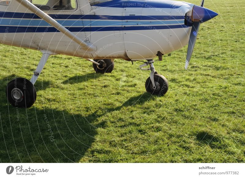 All the wheels on it? Let's go! Machinery Aviation Airplane Two-seater Aircraft Airfield Flying Green Meadow Fear of flying Airplane window Propeller