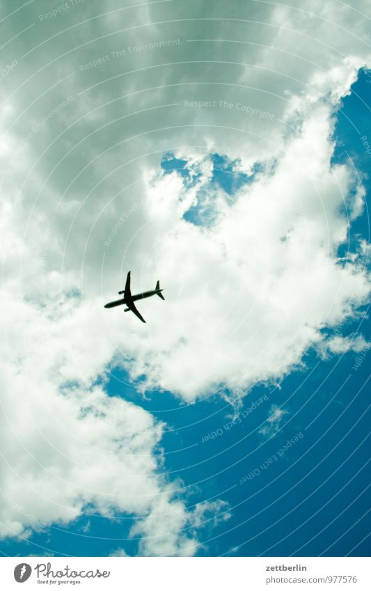 Sky Vacation & Travel Summer Sun Clouds Travel photography Freedom Bright Flying Above Aviation Airplane Planning Logistics Airplane takeoff Direction