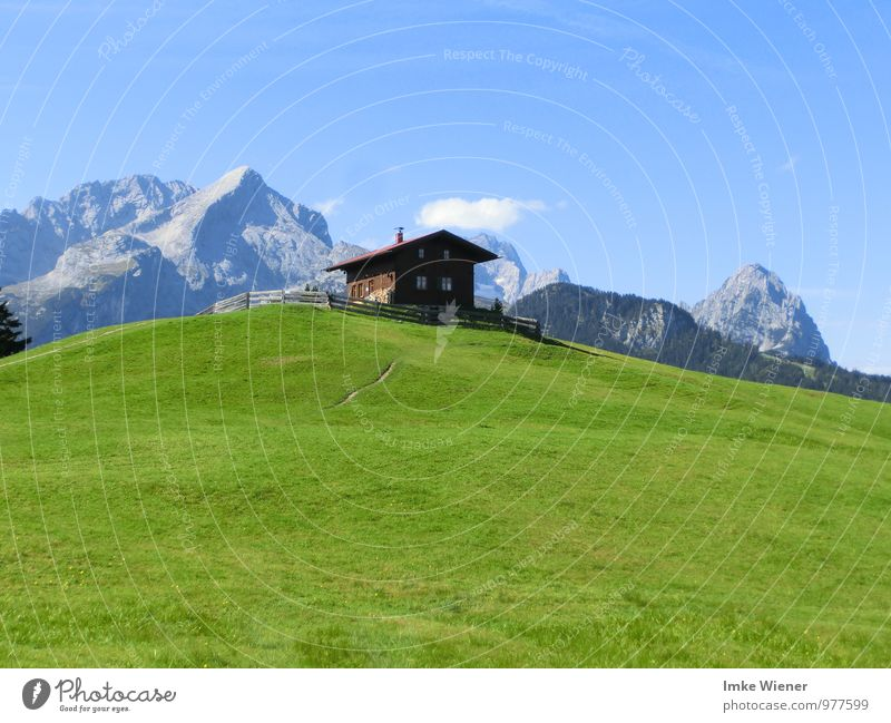Sky Nature Vacation & Travel Blue Plant Green Summer Sun Landscape Calm Clouds Animal Mountain Meadow Hiking Trip