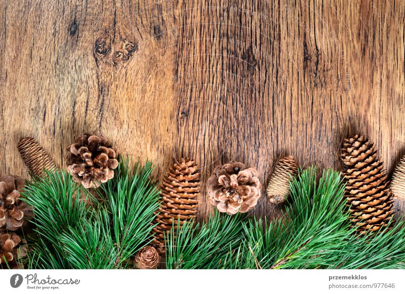 Christmas decoration Green Winter Natural Background picture Wood Feasts & Celebrations Decoration Copy Space Authentic Seasons Twig Tradition Vintage Pine