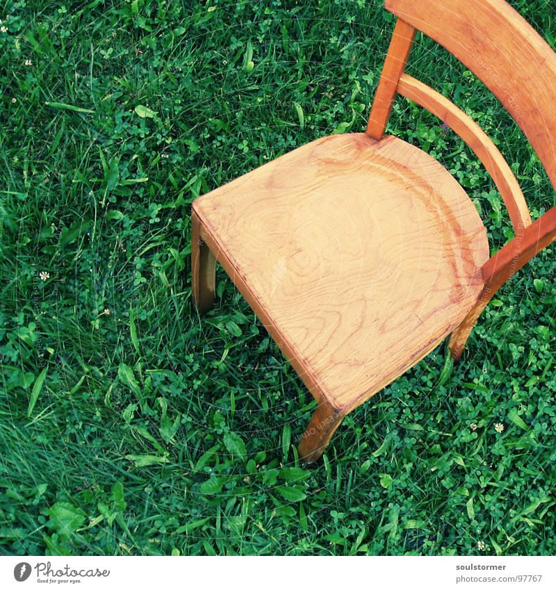 Seat III Meadow Seating Wood Wet Cold Loneliness Calm Bird's-eye view Leaf Green Brown Light brown Dark green Distress Relaxation Weather Furniture Chair Lawn