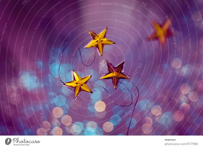Christmas & Advent Feasts & Celebrations Moody Pink Gold Star (Symbol) Sign Violet Turquoise Anticipation Christmas decoration Christmas star