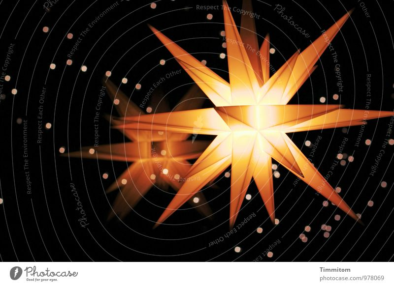 Christmas & Advent Dark Window Black Yellow Emotions Together Bright Living or residing Illuminate Decoration Gold Esthetic Star (Symbol) Anticipation