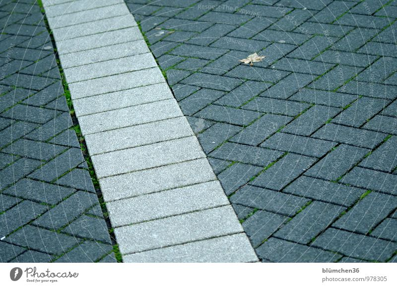 AST7 Pott | transverse Bochum The Ruhr Town Downtown Old town Pedestrian precinct Lanes & trails Gloomy Gray Places Paving stone Floor covering Sidewalk Across