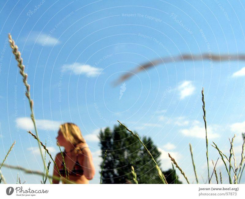 Woman Summer Relaxation Blonde Observe Bikini Sunbathing Blue sky Voyeurism Moral Swimsuit Unobserved
