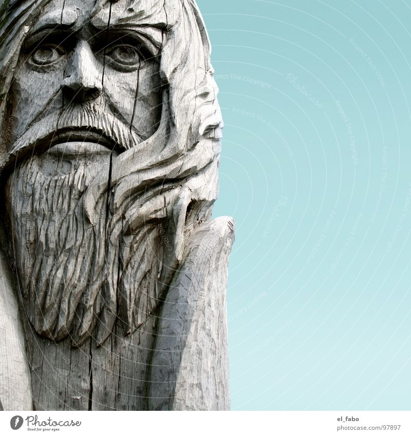 Old Tree Wood Hair and hairstyles Facial hair Statue Crack & Rip & Tear Sculpture Rügen Peoples Brittle Vikings