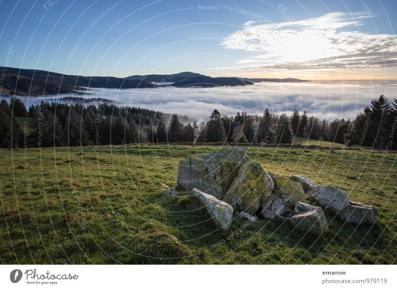 Sky Nature Vacation & Travel Landscape Clouds Far-off places Forest Environment Mountain Autumn Grass Natural Freedom Rock Air Weather