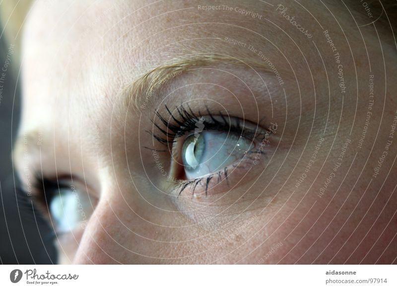 instant Eyelash Looking Woman Mascara Eyes Face