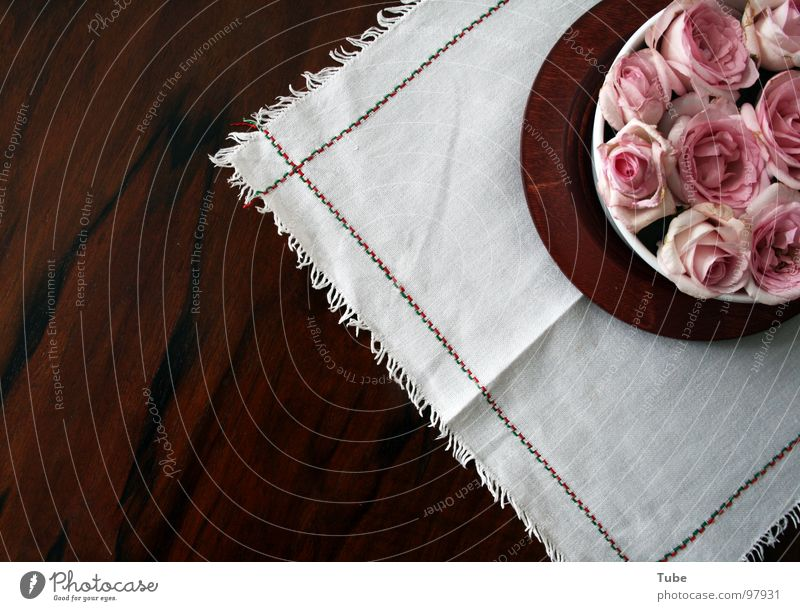 Pink Impressions II Wood Brown Table Rose Green White Red Blossom Airy Easy Heap Stripe Flower Still Life Composing Dark Comforting Heavy Wood flour Sympathy