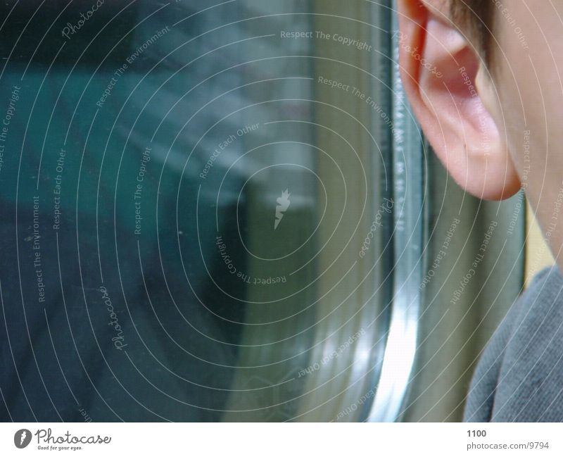 Human being Window Railroad Ear