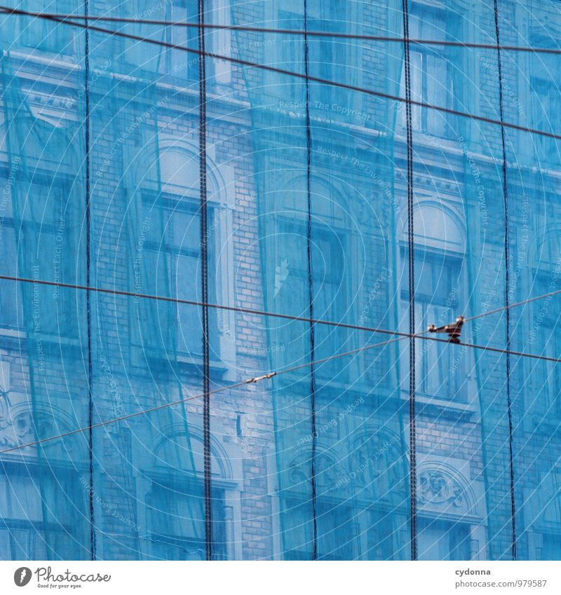 City Blue Colour House (Residential Structure) Window Life Architecture Line Facade Flat (apartment) Living or residing Esthetic Beginning Transience Change