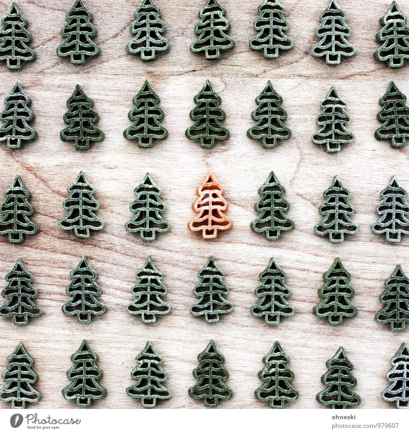 Christmas & Advent Green Forest Eating Orange Nutrition Christmas tree Fir tree Noodles