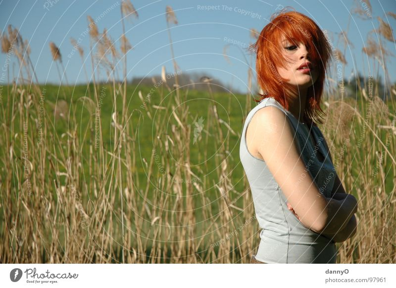 Woman Beautiful Blue Red Playing Spring Field River Hill Common Reed