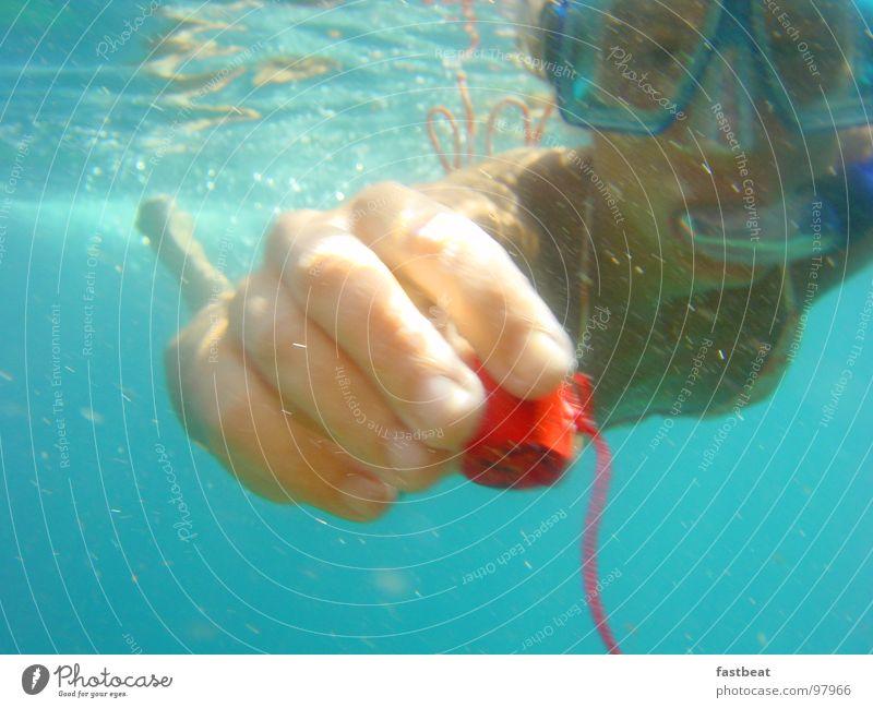 underwater love Diver Vacation & Travel Peace Summer divergent swimming under water Underwater photo Joy hope Swimming & Bathing