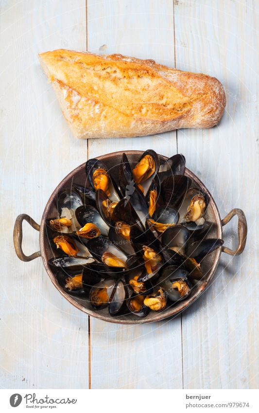 Mussels from Brussels Food Seafood Dough Baked goods Lunch Dinner Organic produce Bowl Cheap Good Mussel shell Bread Baguette Wooden board Rustic
