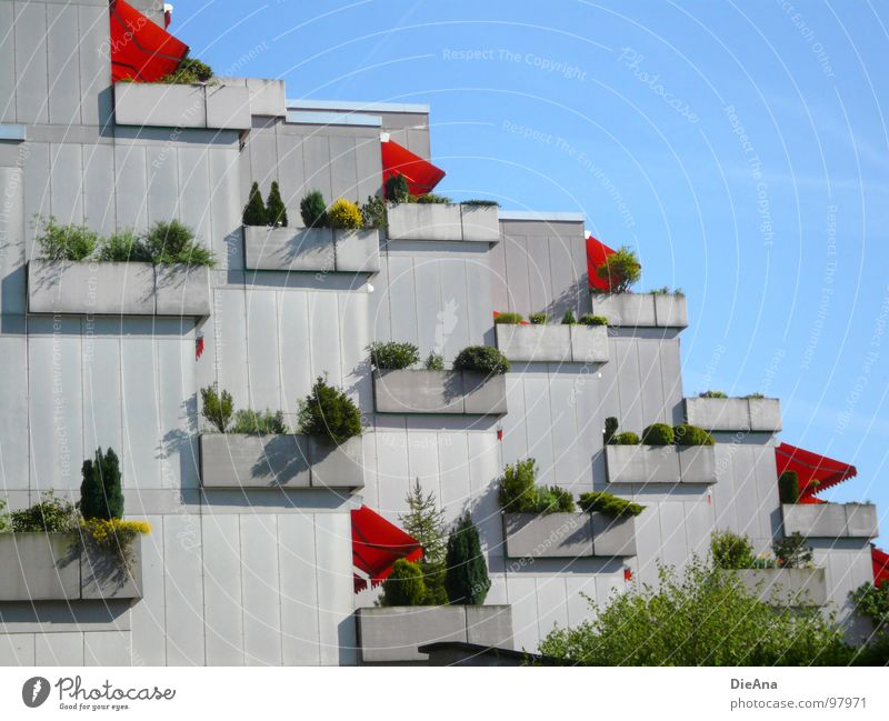 City Plant Summer House (Residential Structure) Life Spring Building Germany Living or residing Balcony Protection Society Weather protection Sky blue Karlsruhe Concrete block