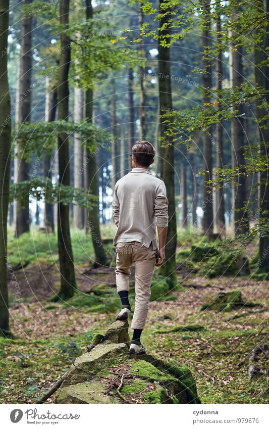 Human being Nature Youth (Young adults) Summer Relaxation Loneliness Landscape Calm Young man 18 - 30 years Forest Environment Adults Life Lanes & trails Healthy