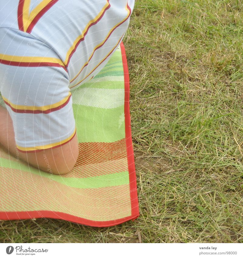 Striped picnic Picnic Summer Joint T-shirt Relaxation Grass Green Square Concert Blanket open Air Music festival Arm in the country Nutrition Human being